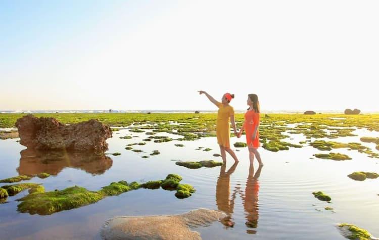Cánh đồng rong biển Phan Rang