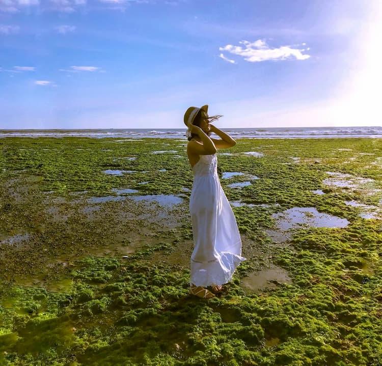 Đẹp mê hoặc tại cánh đồng rong biển Ninh Thuận
